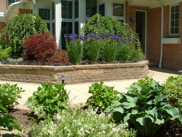 Landscape plantings at rear of Shaker Heights Ohio house designed by DNA Landscape Architects.