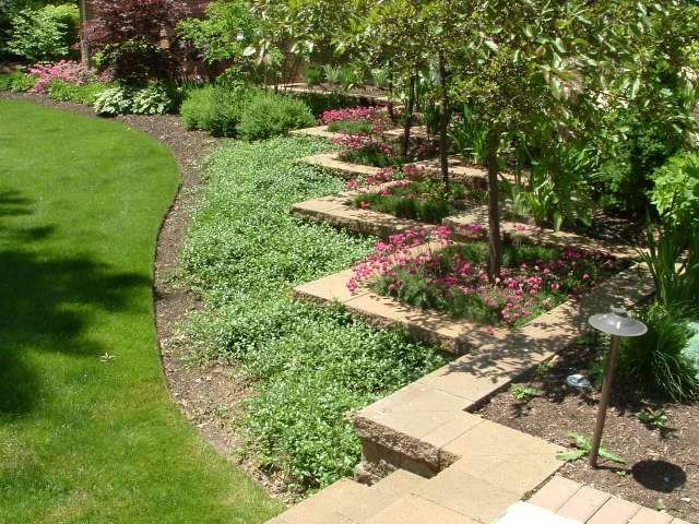 Landscape plantings in beds at rear of house located in Shaker Heights Ohio near Cleveland.